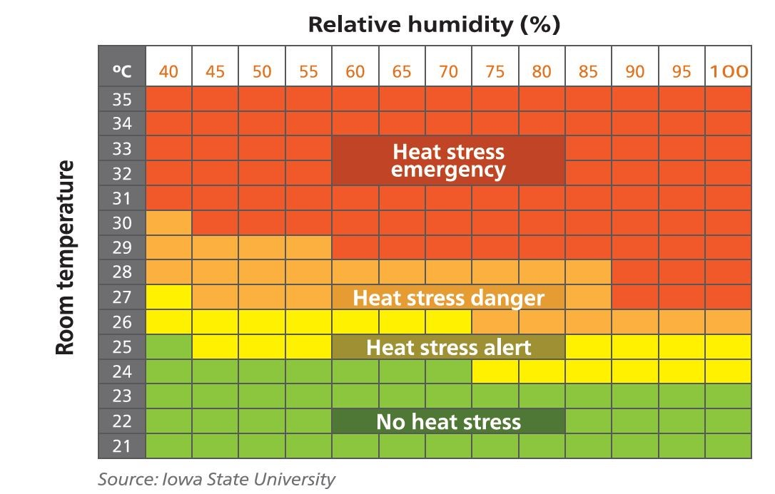 Heat Stress blog4.jpg
