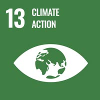 Sustainability Goal 13 - Climate Change (icon)