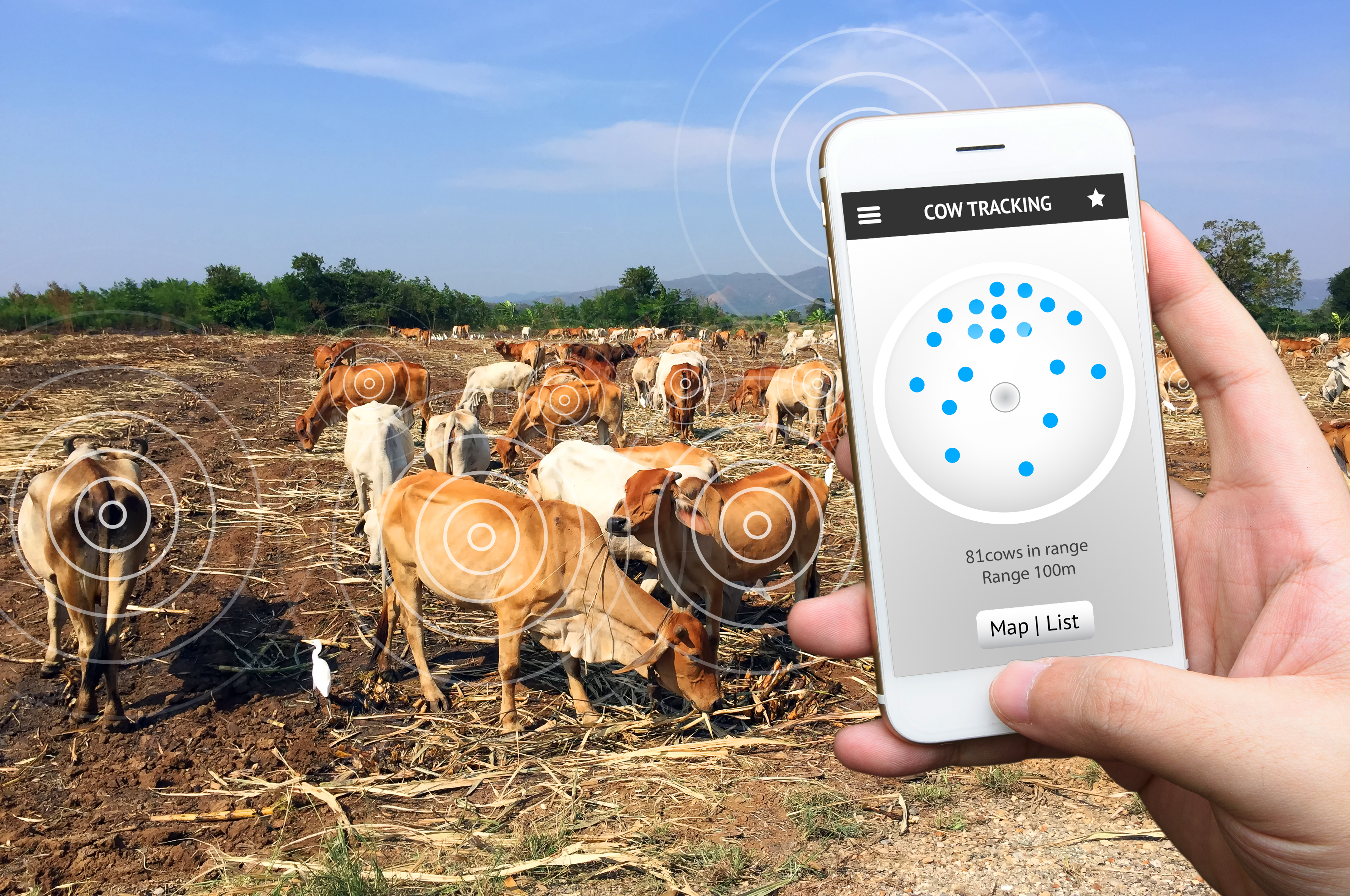 Bridging the data gap in dairy farming: The promise of