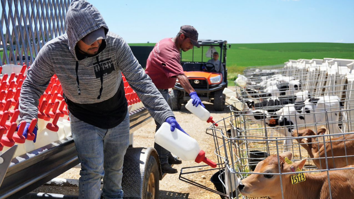 R E S E T-ing the dairy industry to attract and retain employees