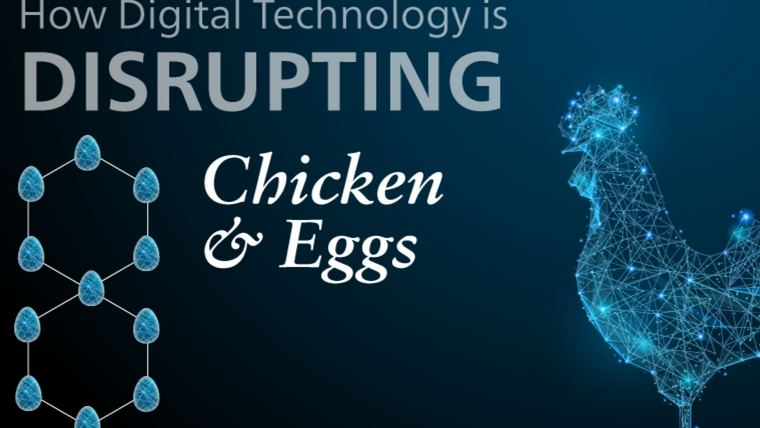 Flocking to digital: The future of poultry technology