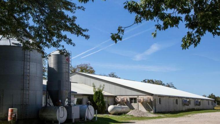 The ultimate checklist for rebuilding a prime swine facility