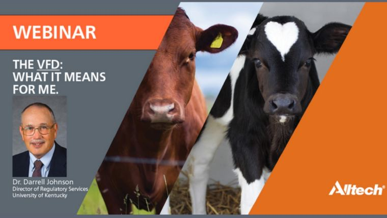 What does the Veterinary Feed Directive mean for me?