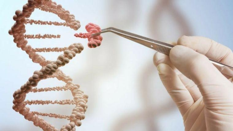 Dr. Karl Dawson: The biologist's toolbox