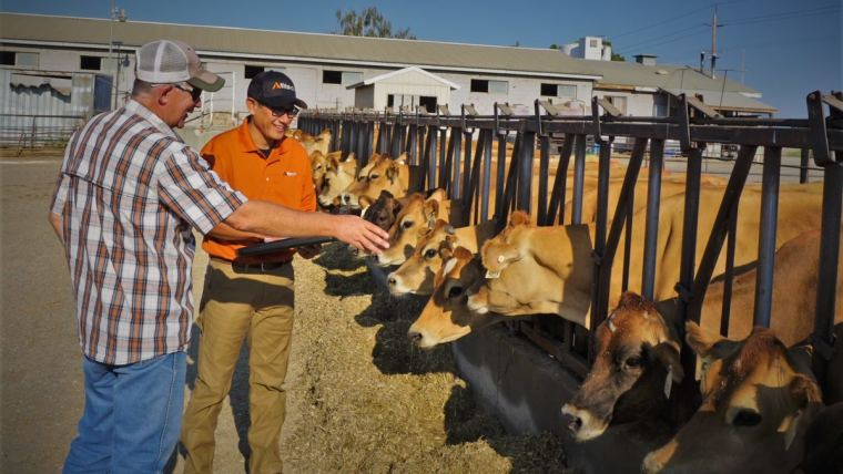 ​Jorge Delgado, an advisor with the Alltech Dairy On-Farm Support program working hands-on with a producer.