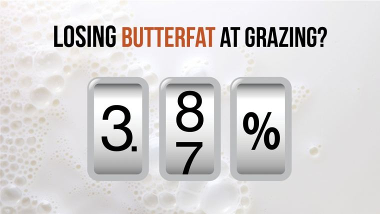 Losing Butterfat at Grazing?