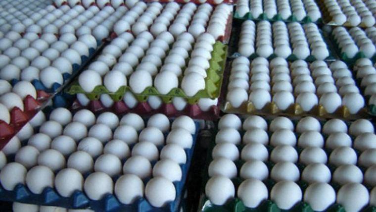 Eggs in crates.