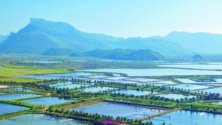Qualidade da água na aquacultura