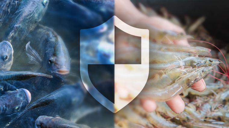 Mecanismos de defesa para peixes e camarões