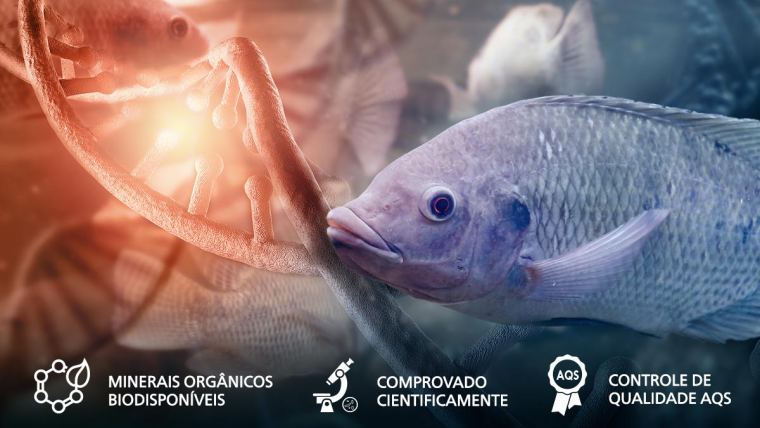 Aquicultura - Minerais organicos
