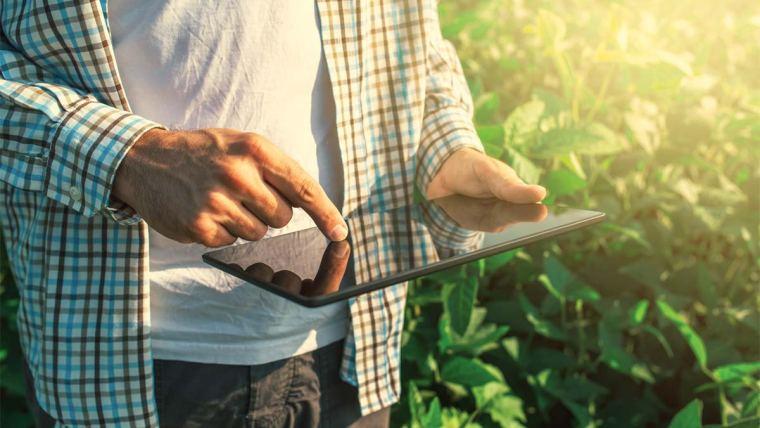 Homem com tablet na lavoura de soja