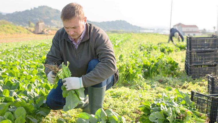 Homenagem ao Dia do Agricultor