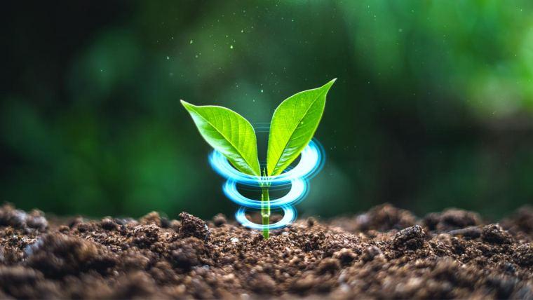 Planta envolvida com tecnologia