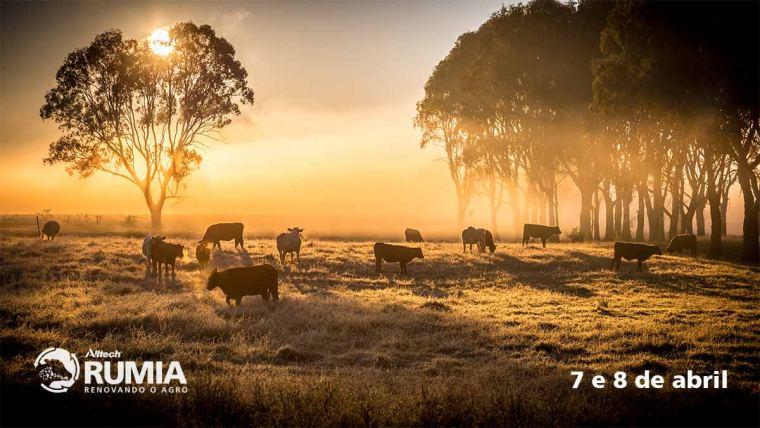 "Fórum virtual irá debater o ""novo normal"" na indústria pecuária"