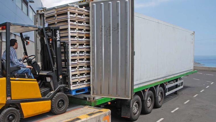 Manejo nutricional auxilia produtores a atingirem índices para exportação de frutas