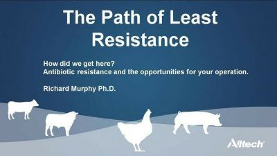 Insights into the impact of antibiotic resistance