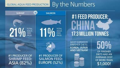 Fish feed findings: Alltech's 1st global aquaculture feed production survey