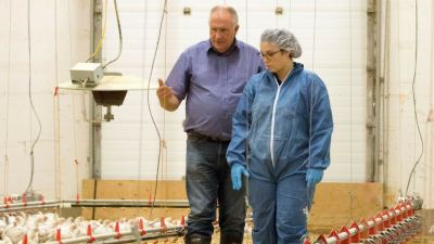 Food safety: Protecting the consumer starts on-farm