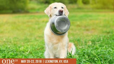 ONE: The Alltech Ideas Conference invites pet industry experts to explore the transformative power of ideas