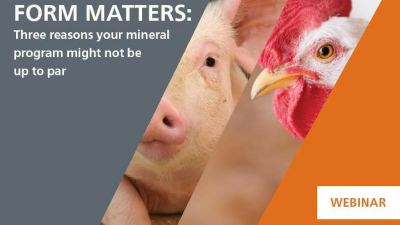 For pigs and poultry, mineral form matters