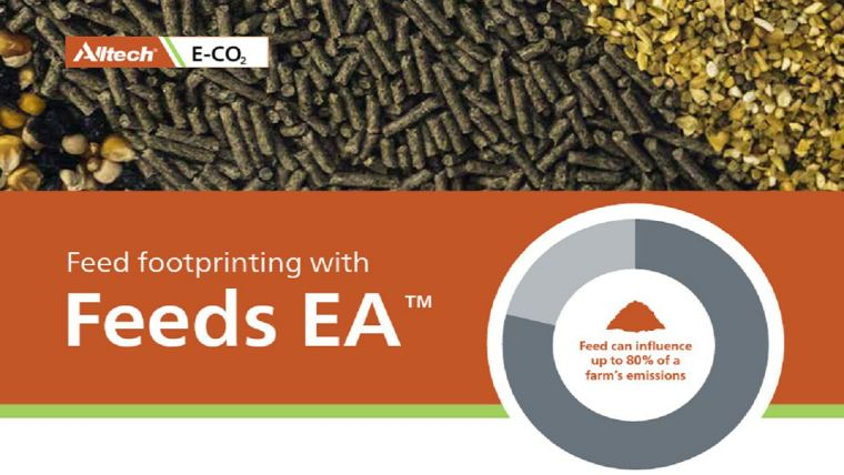 Feeds EA
