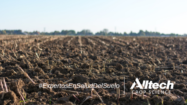 Alltech ® Crop Science obtiene el registro como biofertilizantes para dos productos más de su línea CONTRIBUTE ®