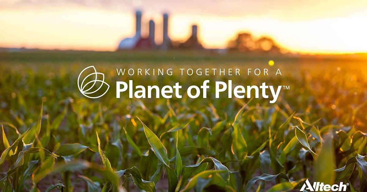 Planet of Plenty social friendly graphic