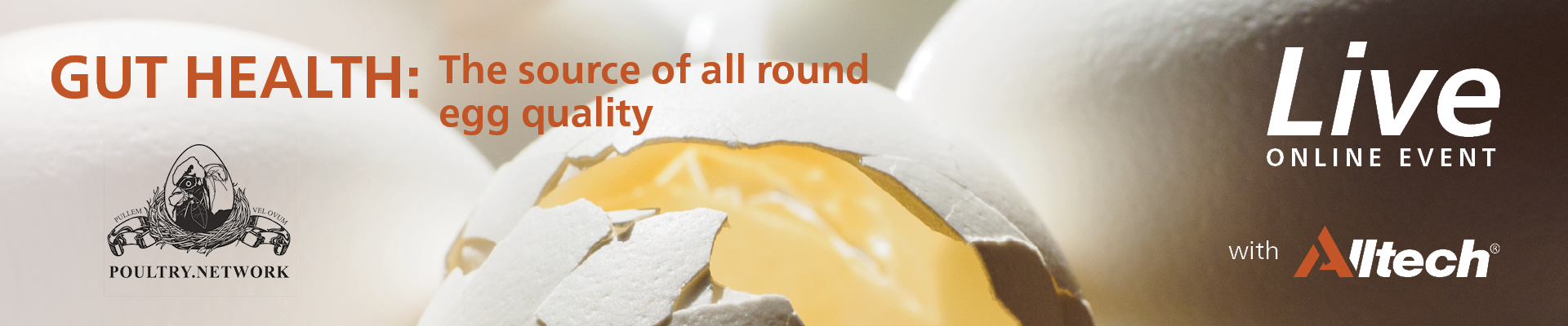 GUT HEALTH: The source of all round egg quality