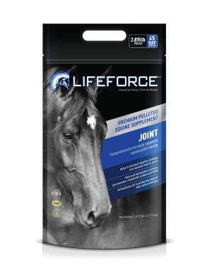 Lifeforce Joint Pouch